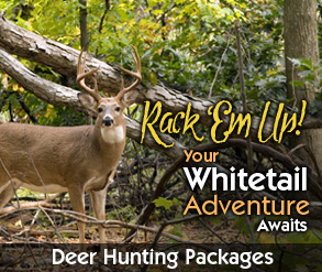 rack em up your whitetail adventure awaits deer hunting packages cedar island lodge pipestone lake