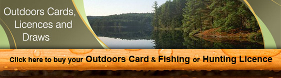 buy an ontario fishing and hunting license