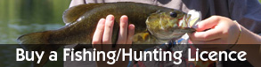 buy licence for hunting or fishing at cedar island lodge pipestone lake