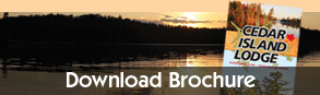 download a brochure for cedar island lodge pipestone lake ontario canada